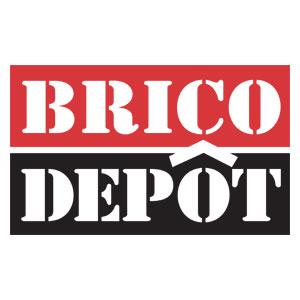 Logo Brico dépôt - Référence client - Jérôme Adam - Conférencier Entrepreneur