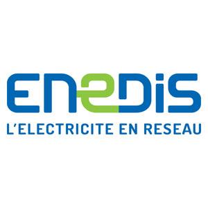 Logo Enedis - Référence client - Jérôme Adam - Conférencier Entrepreneur